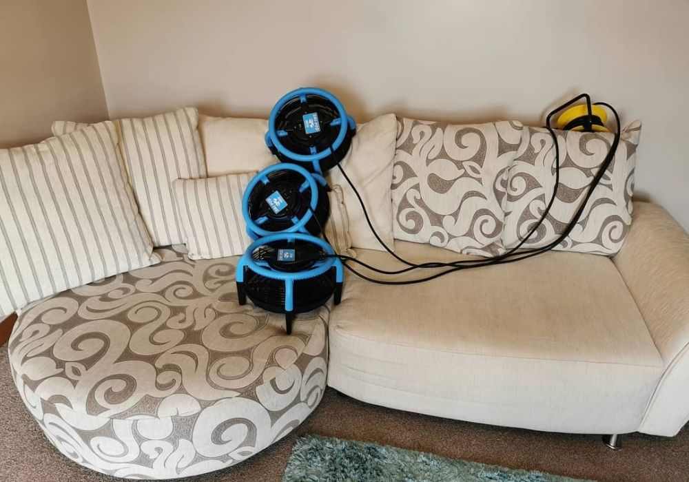 Carpet and Upholstery Cleaning in Lisburn Northern Ireland