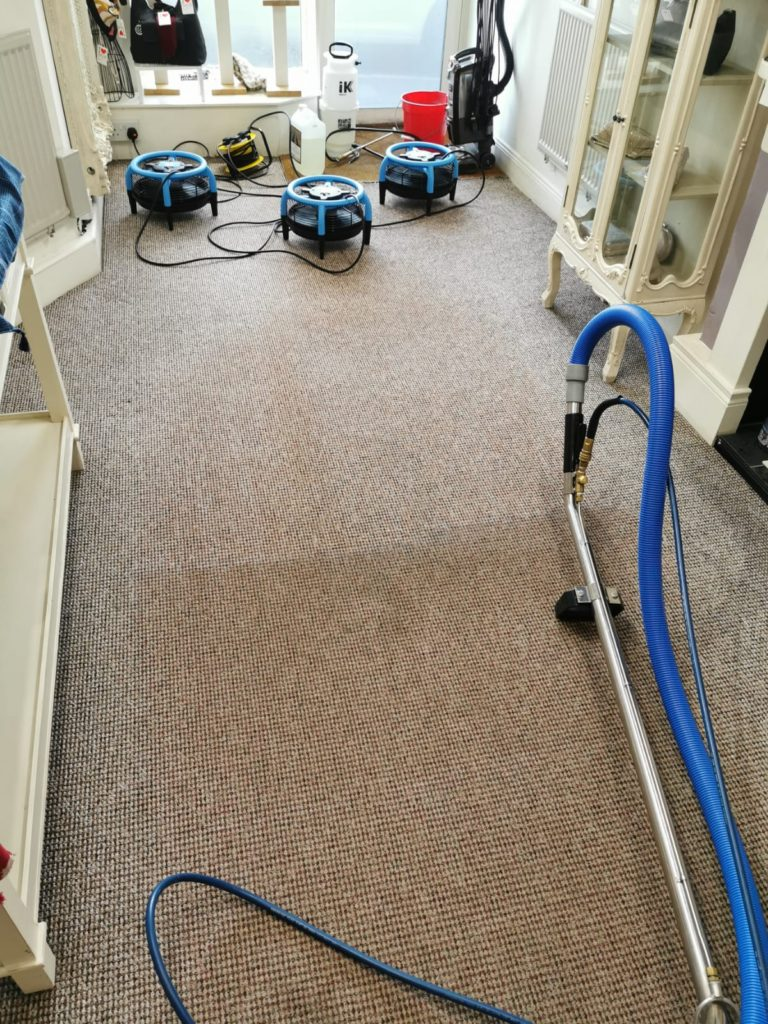 Mourne Carpet Care - Your local Belfast carpet cleaner