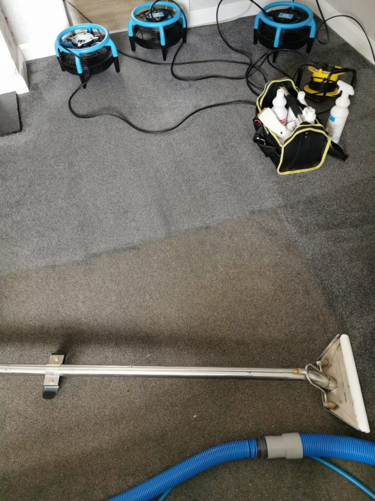 Before & After - Carpet Cleaning in Belfast